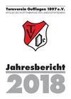 TVOe_Jahresbericht_2018_-_27.03.2019-2_Ansicht.pdf